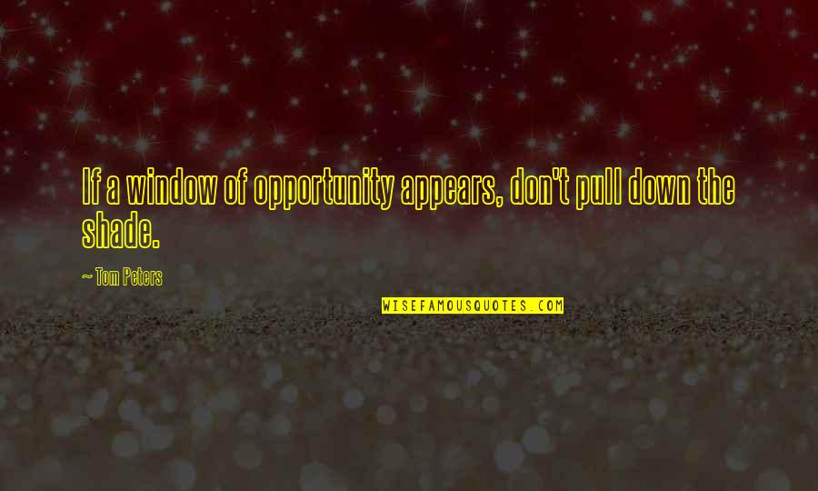 Duniyadari Book Quotes By Tom Peters: If a window of opportunity appears, don't pull