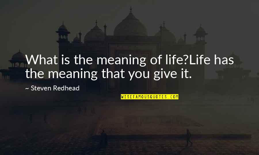 Dustoff Quotes By Steven Redhead: What is the meaning of life?Life has the