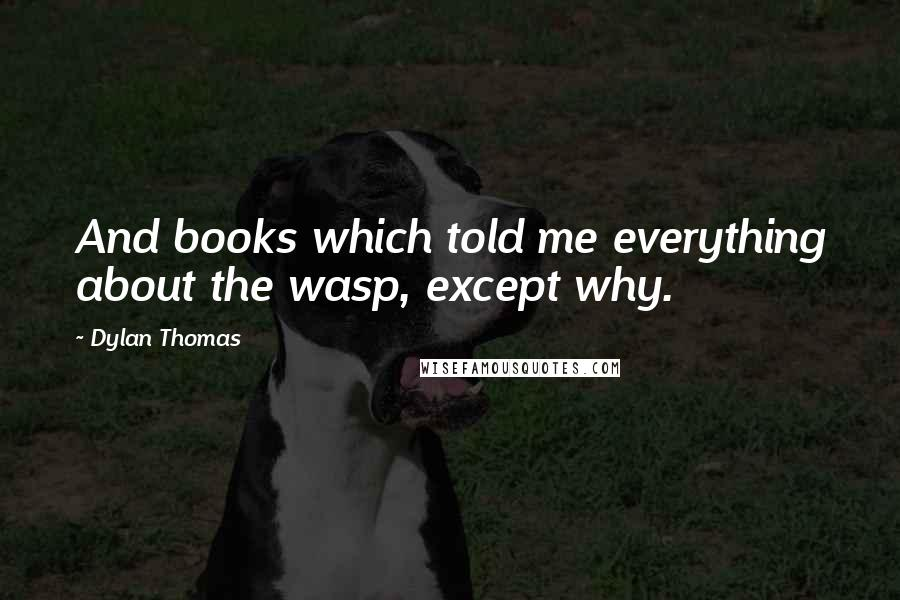 Dylan Thomas quotes: And books which told me everything about the wasp, except why.