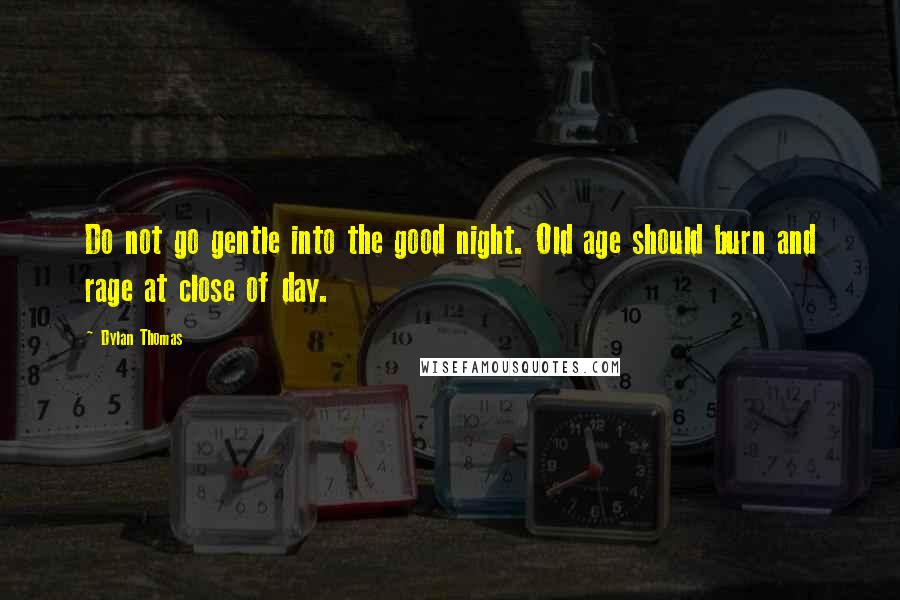 Dylan Thomas quotes: Do not go gentle into the good night. Old age should burn and rage at close of day.