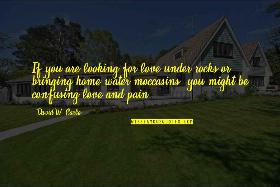 Dysfunctional Family Quotes By David W. Earle: If you are looking for love under rocks