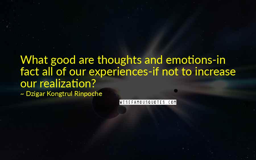 Dzigar Kongtrul Rinpoche quotes: What good are thoughts and emotions-in fact all of our experiences-if not to increase our realization?
