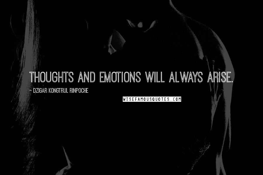 Dzigar Kongtrul Rinpoche quotes: Thoughts and emotions will always arise.