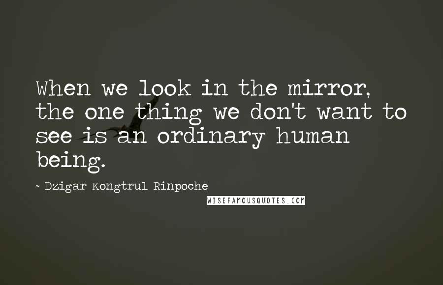 Dzigar Kongtrul Rinpoche quotes: When we look in the mirror, the one thing we don't want to see is an ordinary human being.