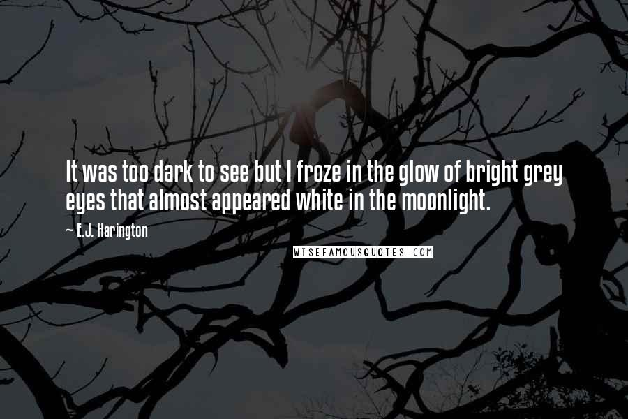 E.J. Harington quotes: It was too dark to see but I froze in the glow of bright grey eyes that almost appeared white in the moonlight.