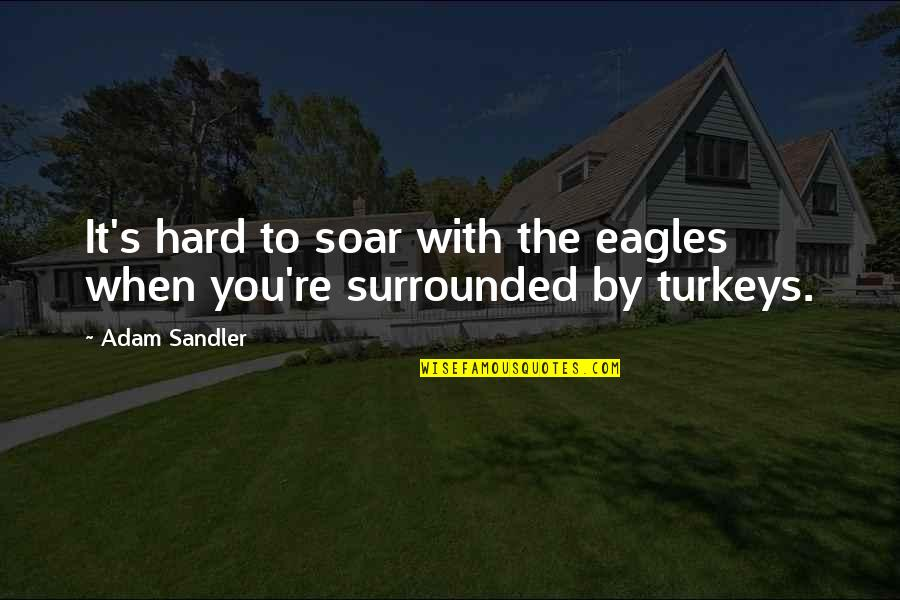 Eagles Soar Quotes Top 31 Famous Quotes About Eagles Soar