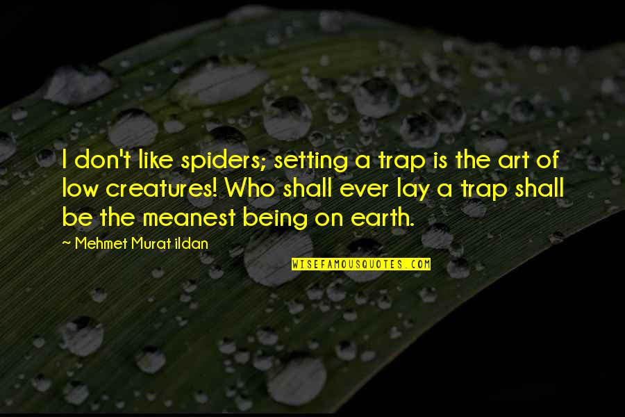Earth And Art Quotes By Mehmet Murat Ildan: I don't like spiders; setting a trap is