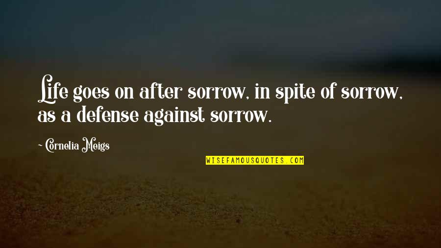 Earth And Sky Meet Quotes By Cornelia Meigs: Life goes on after sorrow, in spite of