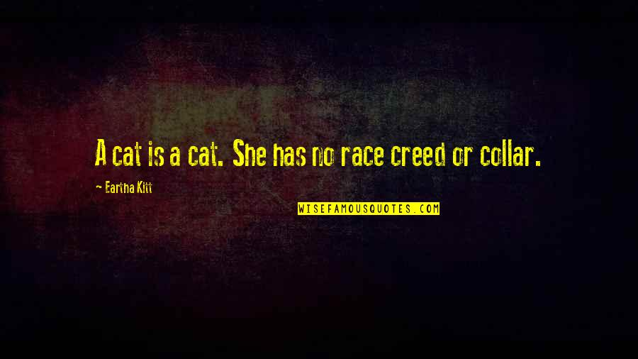 Eartha Quotes By Eartha Kitt: A cat is a cat. She has no