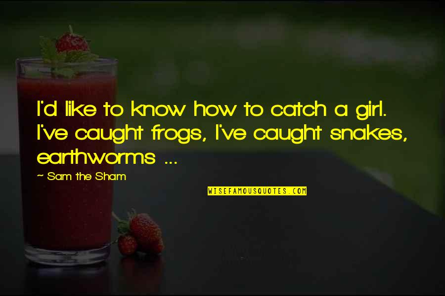 Earthworms Quotes By Sam The Sham: I'd like to know how to catch a