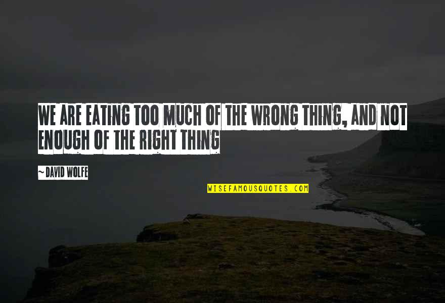 Eating Right Quotes By David Wolfe: We are eating too much of the wrong
