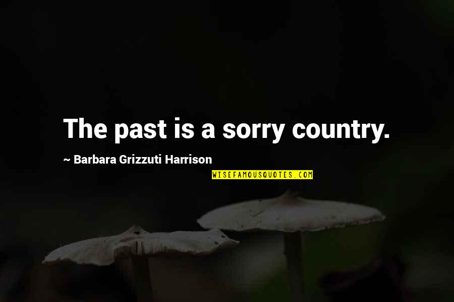 Echoic Quotes By Barbara Grizzuti Harrison: The past is a sorry country.