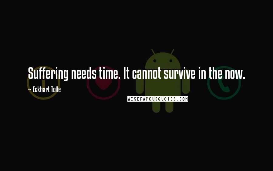 Eckhart Tolle quotes: Suffering needs time. It cannot survive in the now.