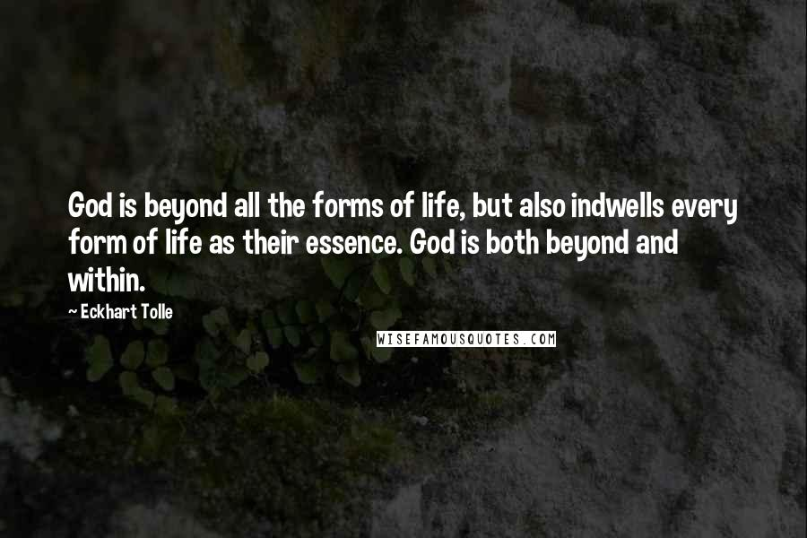 Eckhart Tolle quotes: God is beyond all the forms of life, but also indwells every form of life as their essence. God is both beyond and within.