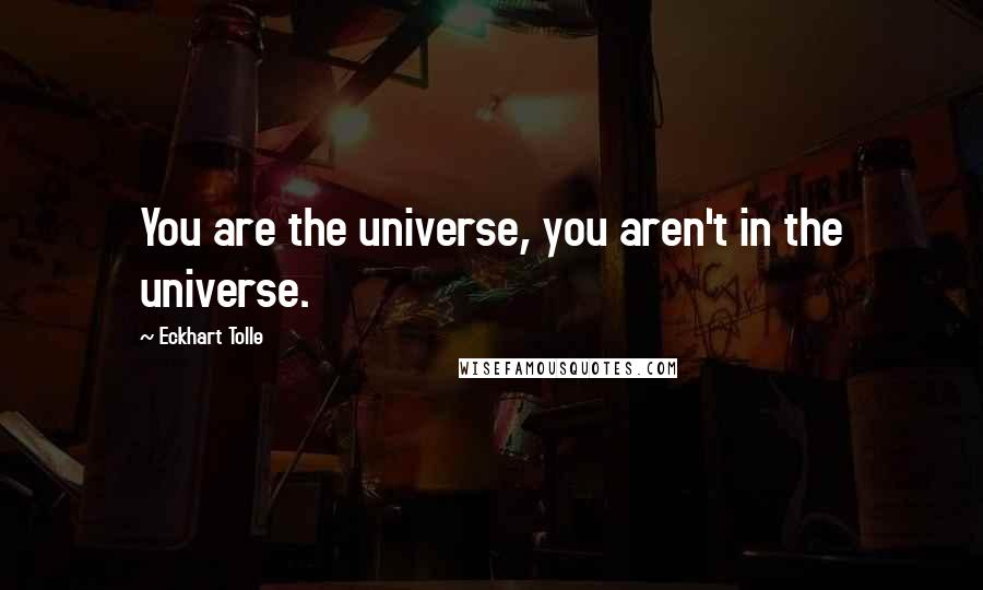 Eckhart Tolle quotes: You are the universe, you aren't in the universe.