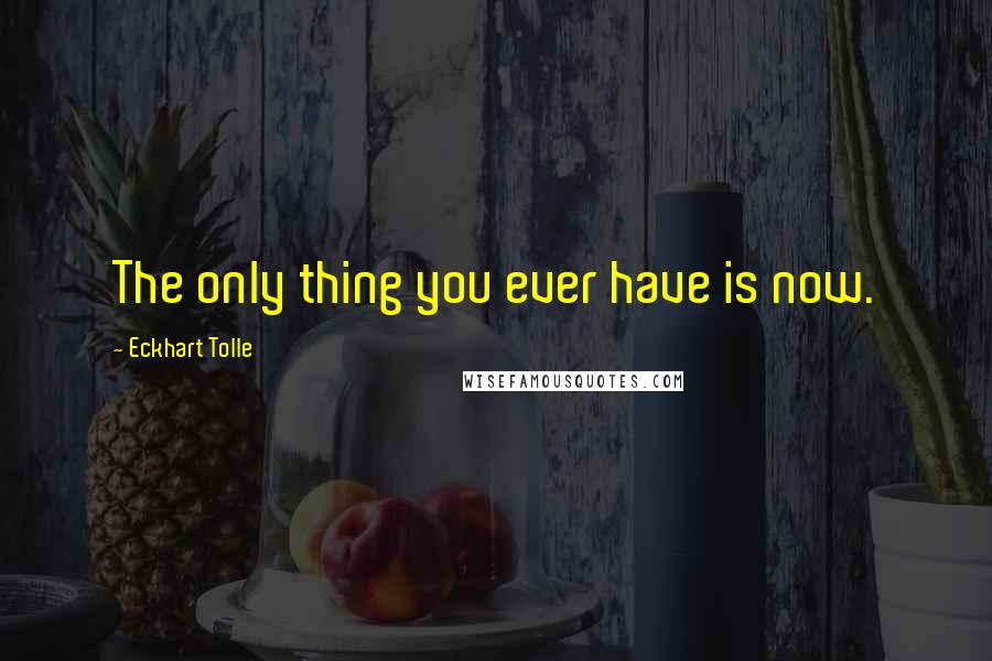 Eckhart Tolle quotes: The only thing you ever have is now.
