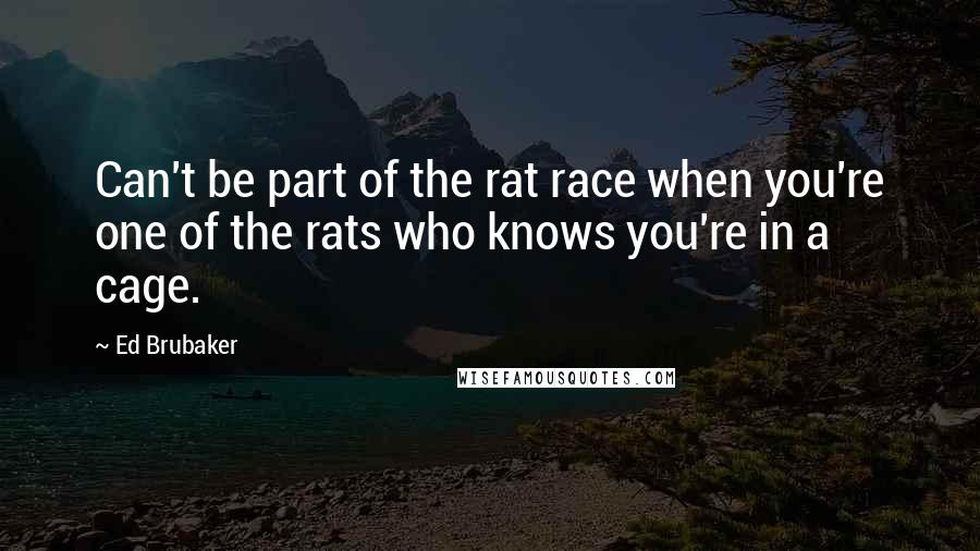 Ed Brubaker quotes: Can't be part of the rat race when you're one of the rats who knows you're in a cage.