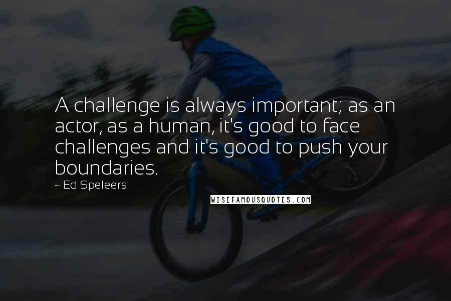 Ed Speleers quotes: A challenge is always important; as an actor, as a human, it's good to face challenges and it's good to push your boundaries.