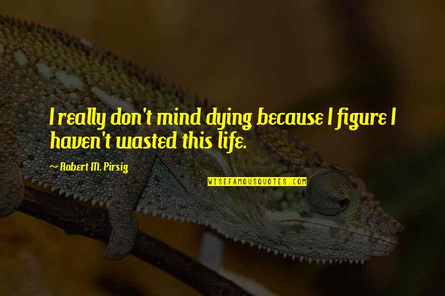 Eddie Deezen Quotes By Robert M. Pirsig: I really don't mind dying because I figure