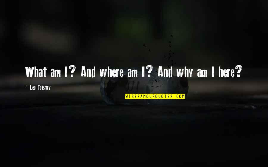 Eddie O'sullivan Funny Quotes By Leo Tolstoy: What am I? And where am I? And