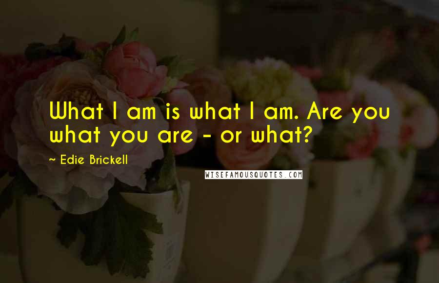 Edie Brickell quotes: What I am is what I am. Are you what you are - or what?