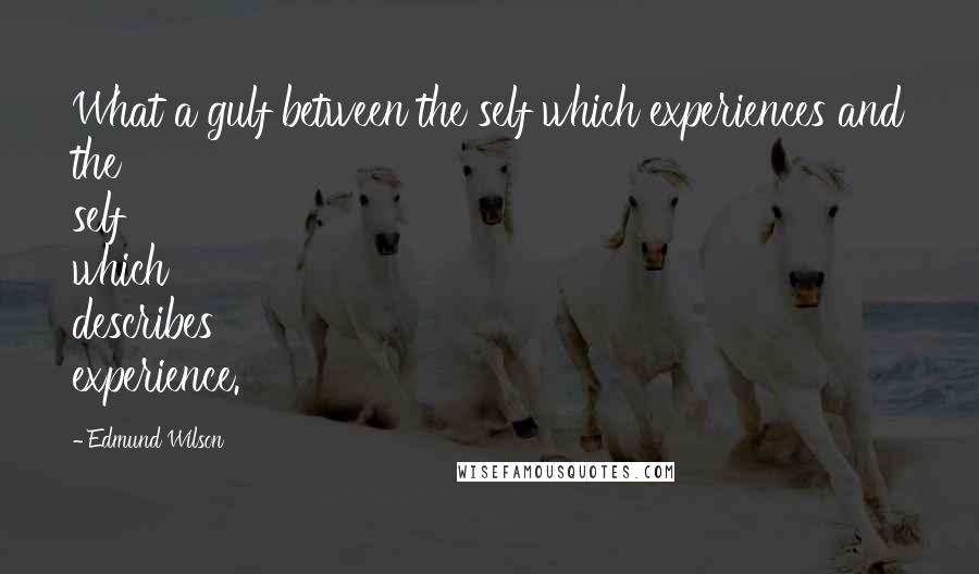 Edmund Wilson quotes: What a gulf between the self which experiences and the self which describes experience.