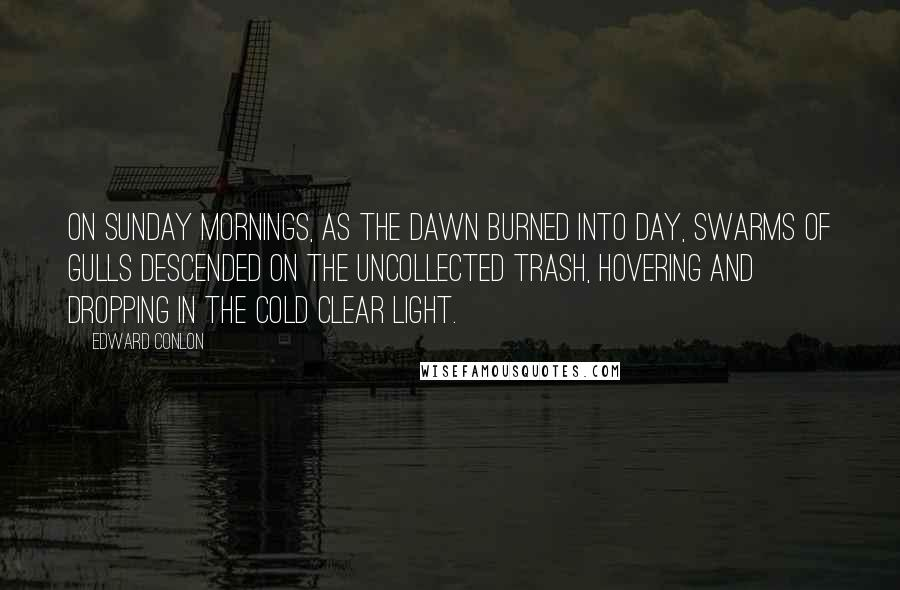 Edward Conlon quotes: On Sunday mornings, as the dawn burned into day, swarms of gulls descended on the uncollected trash, hovering and dropping in the cold clear light.