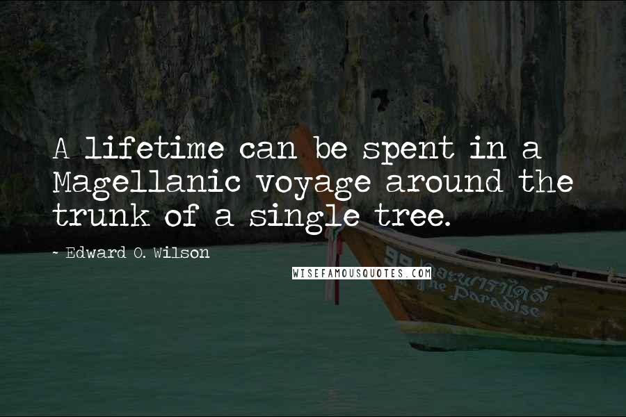 Edward O. Wilson quotes: A lifetime can be spent in a Magellanic voyage around the trunk of a single tree.