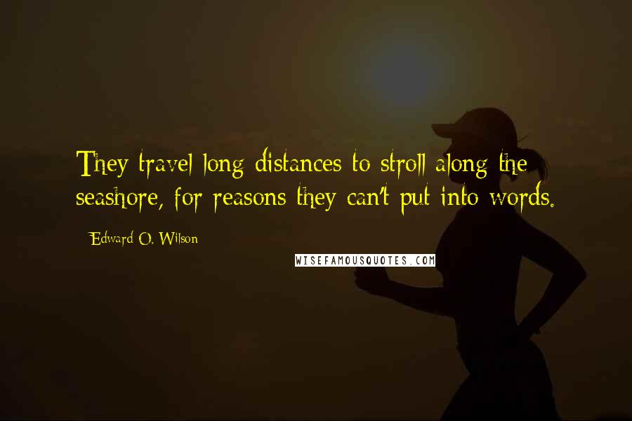 Edward O. Wilson quotes: They travel long distances to stroll along the seashore, for reasons they can't put into words.