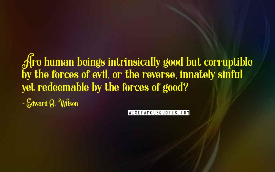 Edward O. Wilson quotes: Are human beings intrinsically good but corruptible by the forces of evil, or the reverse, innately sinful yet redeemable by the forces of good?