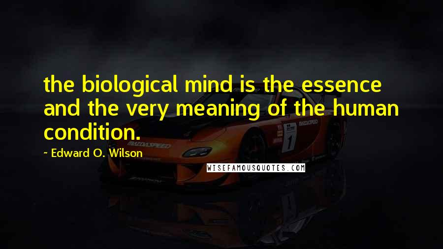 Edward O. Wilson quotes: the biological mind is the essence and the very meaning of the human condition.