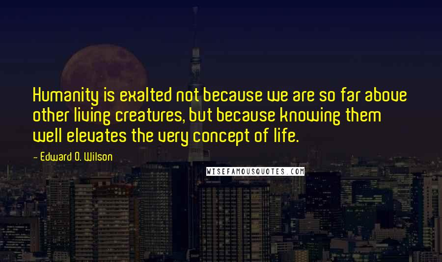 Edward O. Wilson quotes: Humanity is exalted not because we are so far above other living creatures, but because knowing them well elevates the very concept of life.