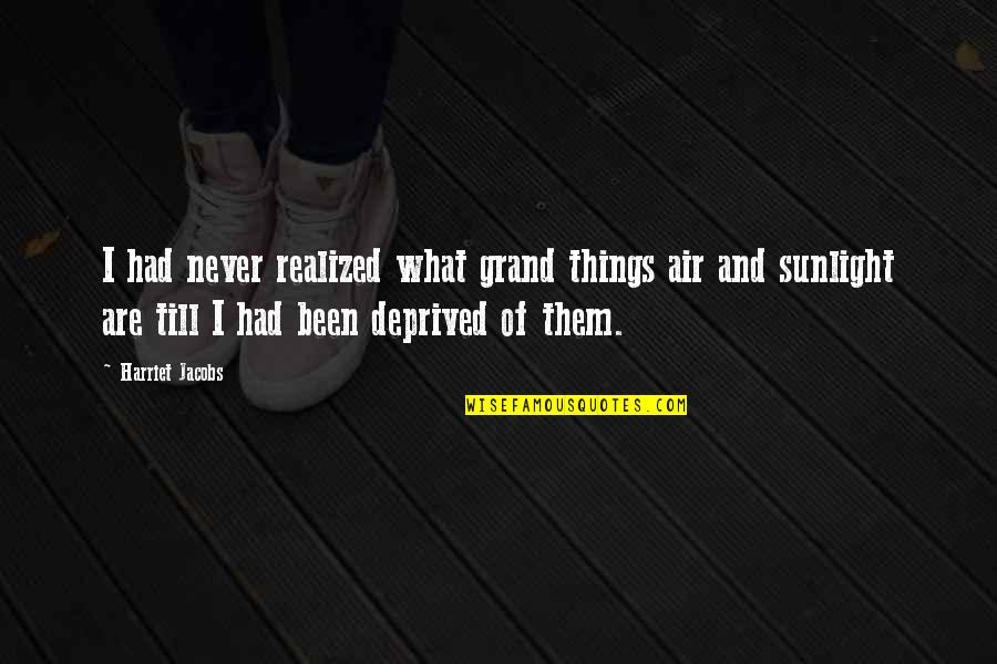 Eearth Quotes By Harriet Jacobs: I had never realized what grand things air