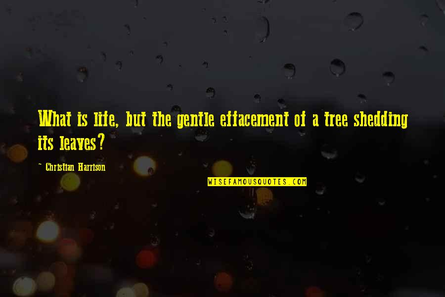 Effacement Quotes By Christian Harrison: What is life, but the gentle effacement of