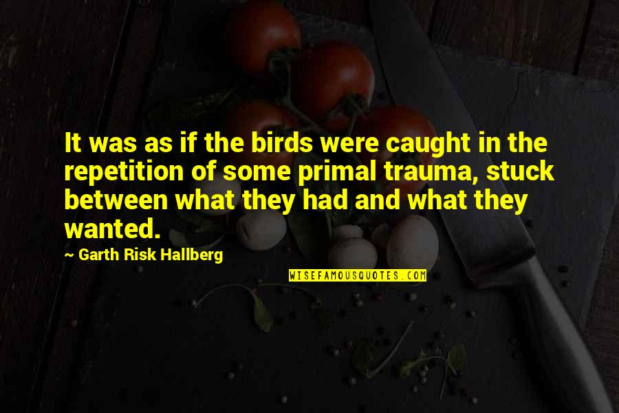 Ego Bruised Quotes By Garth Risk Hallberg: It was as if the birds were caught