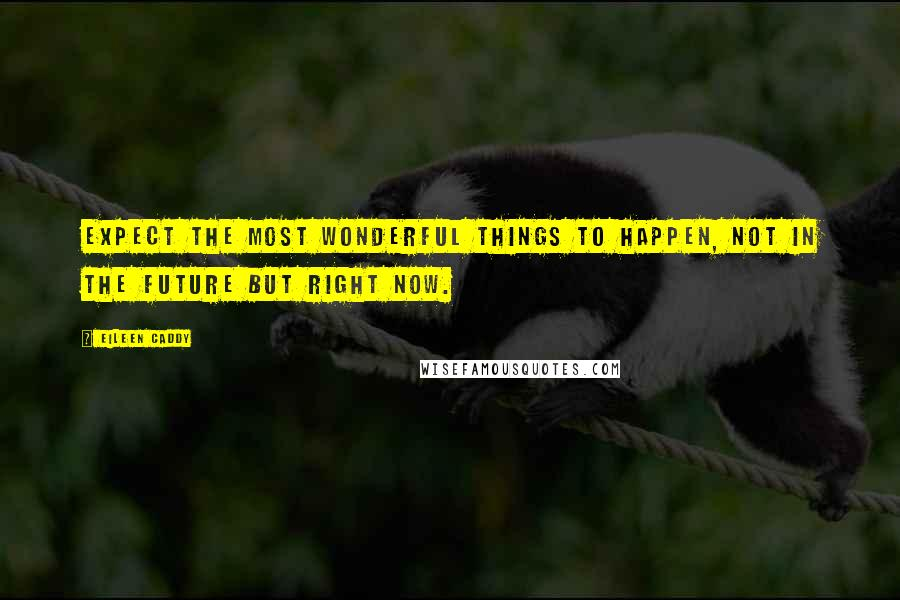Eileen Caddy quotes: Expect the most wonderful things to happen, not in the future but right now.