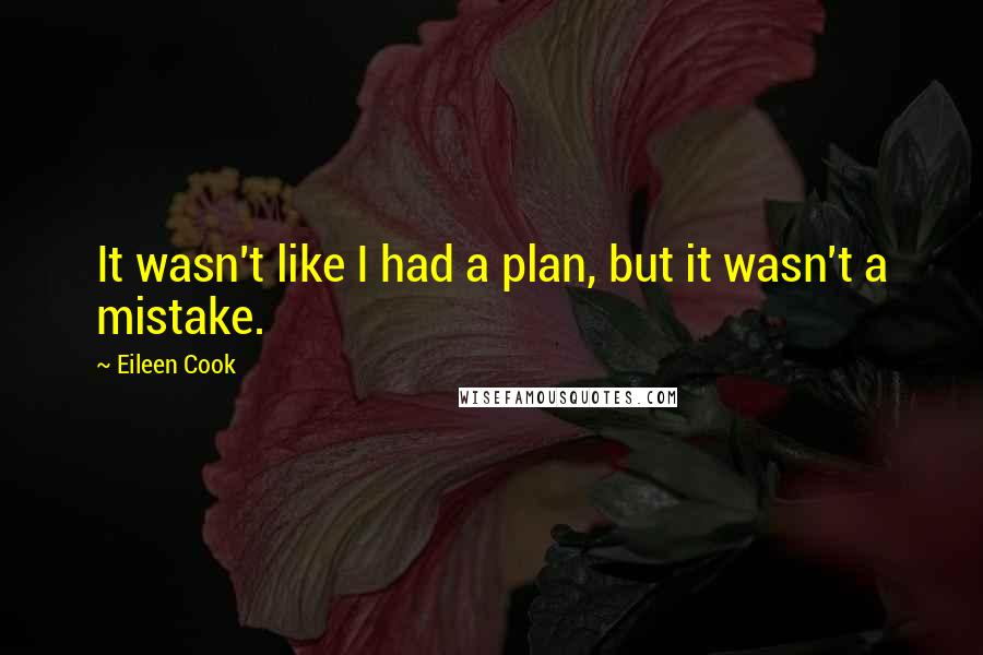 Eileen Cook quotes: It wasn't like I had a plan, but it wasn't a mistake.