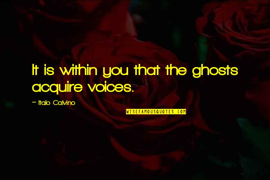 El Hombre Quotes By Italo Calvino: It is within you that the ghosts acquire