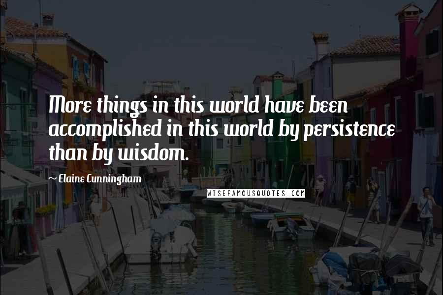 Elaine Cunningham quotes: More things in this world have been accomplished in this world by persistence than by wisdom.