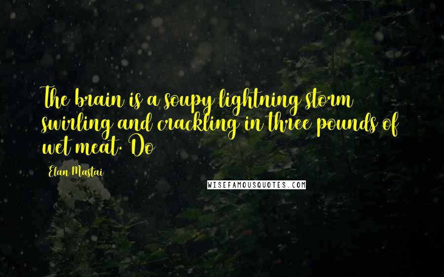 Elan Mastai quotes: The brain is a soupy lightning storm swirling and crackling in three pounds of wet meat. Do