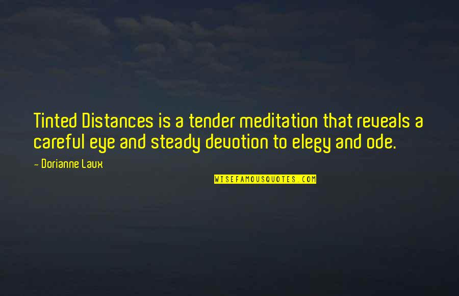 Elegy Quotes By Dorianne Laux: Tinted Distances is a tender meditation that reveals