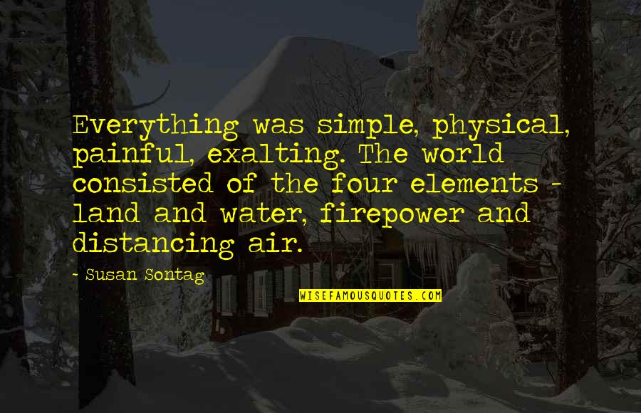 Elements Of Life Quotes By Susan Sontag: Everything was simple, physical, painful, exalting. The world