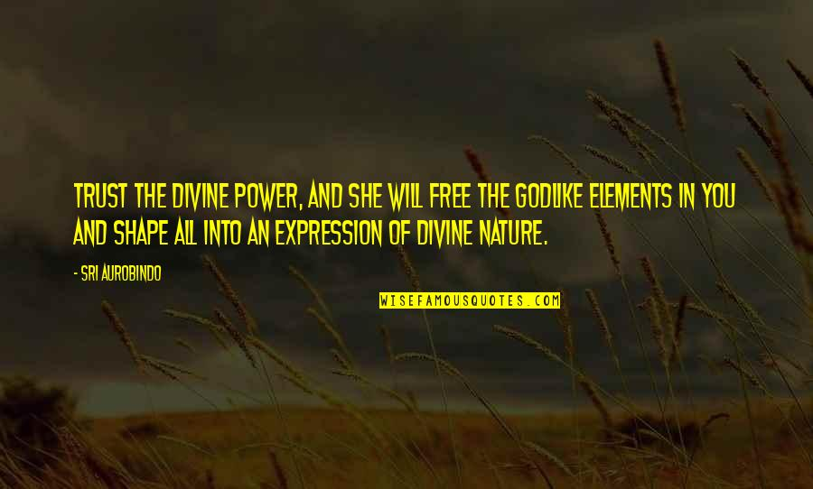 Elements Quotes By Sri Aurobindo: Trust the divine power, and she will free
