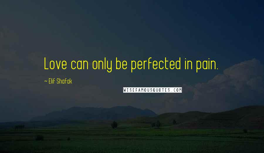 Elif Shafak quotes: Love can only be perfected in pain.