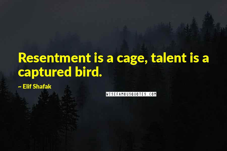 Elif Shafak quotes: Resentment is a cage, talent is a captured bird.