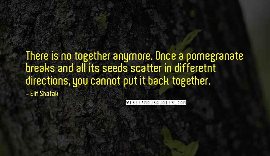 Elif Shafak quotes: There is no together anymore. Once a pomegranate breaks and all its seeds scatter in differetnt directions, you cannot put it back together.
