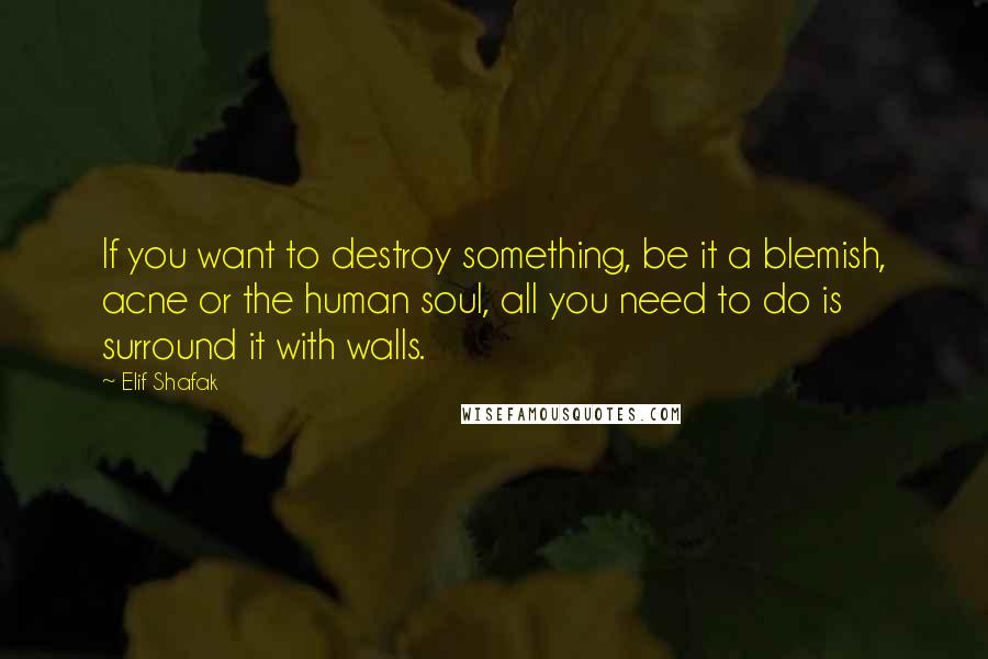 Elif Shafak quotes: If you want to destroy something, be it a blemish, acne or the human soul, all you need to do is surround it with walls.