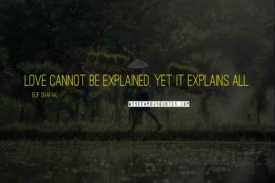 Elif Shafak quotes: Love cannot be explained, yet it explains all.