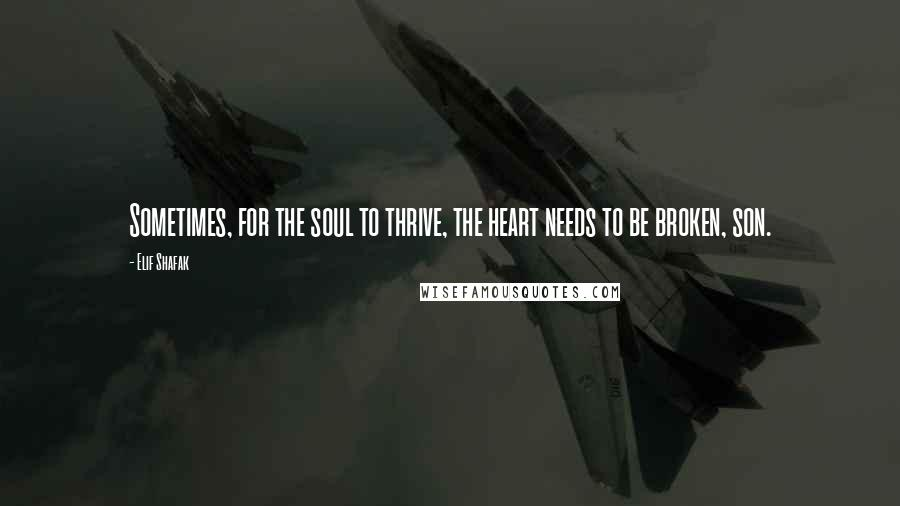 Elif Shafak quotes: Sometimes, for the soul to thrive, the heart needs to be broken, son.