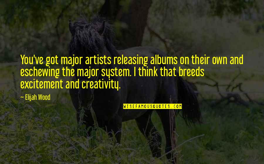 Elijah Quotes By Elijah Wood: You've got major artists releasing albums on their